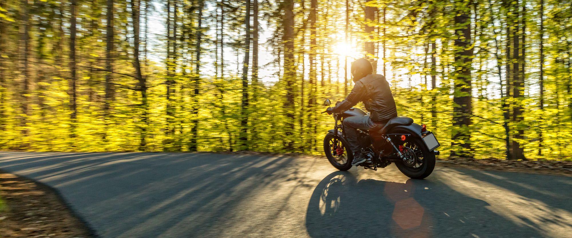Motorrad-Wald.jpg