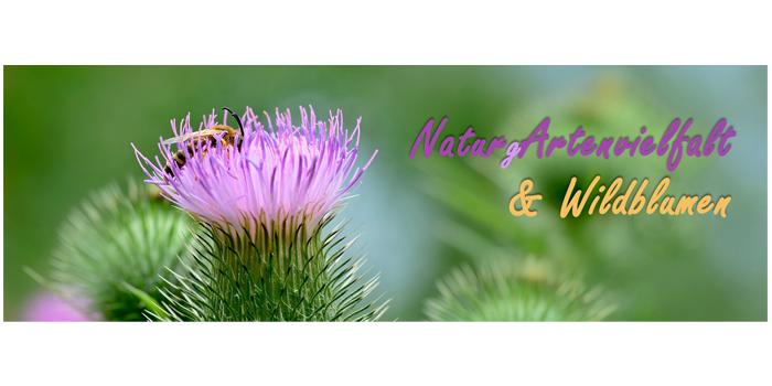 NaturArtenvielfalt.png