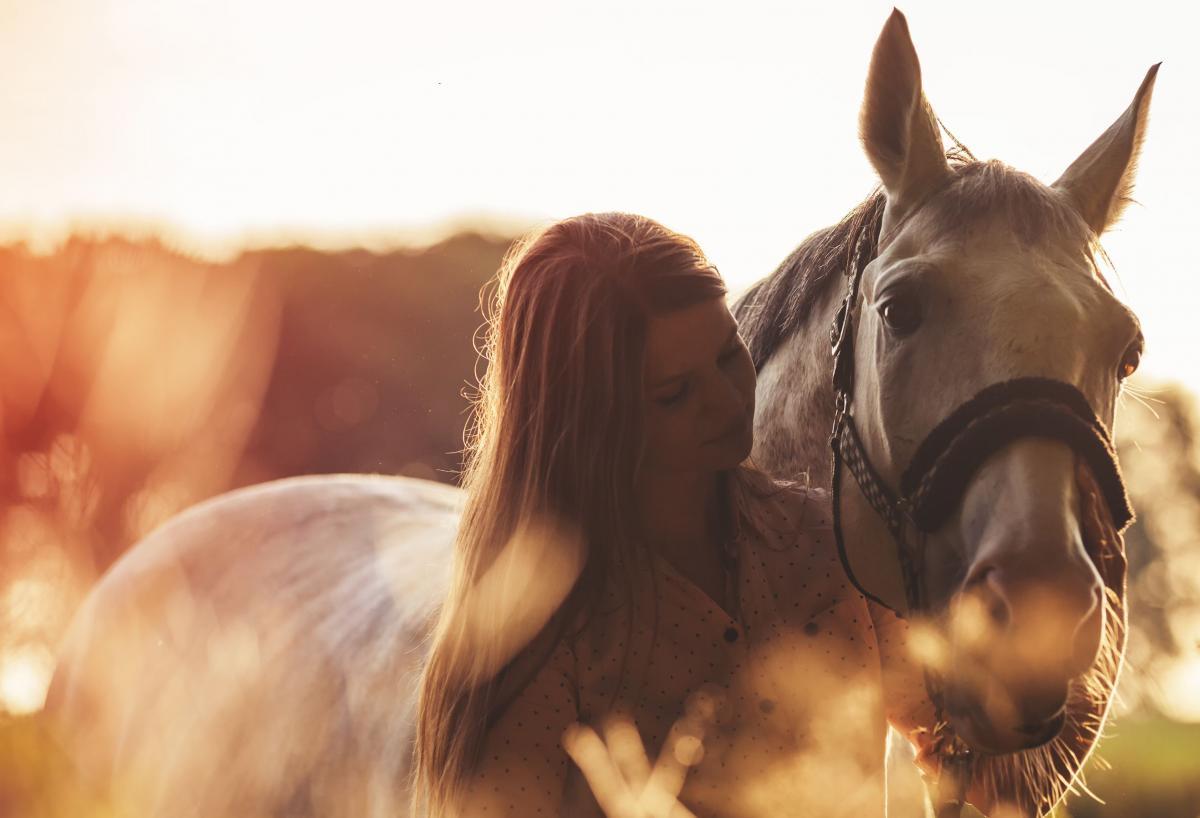 Bilder frau auf pferd Junge frau,